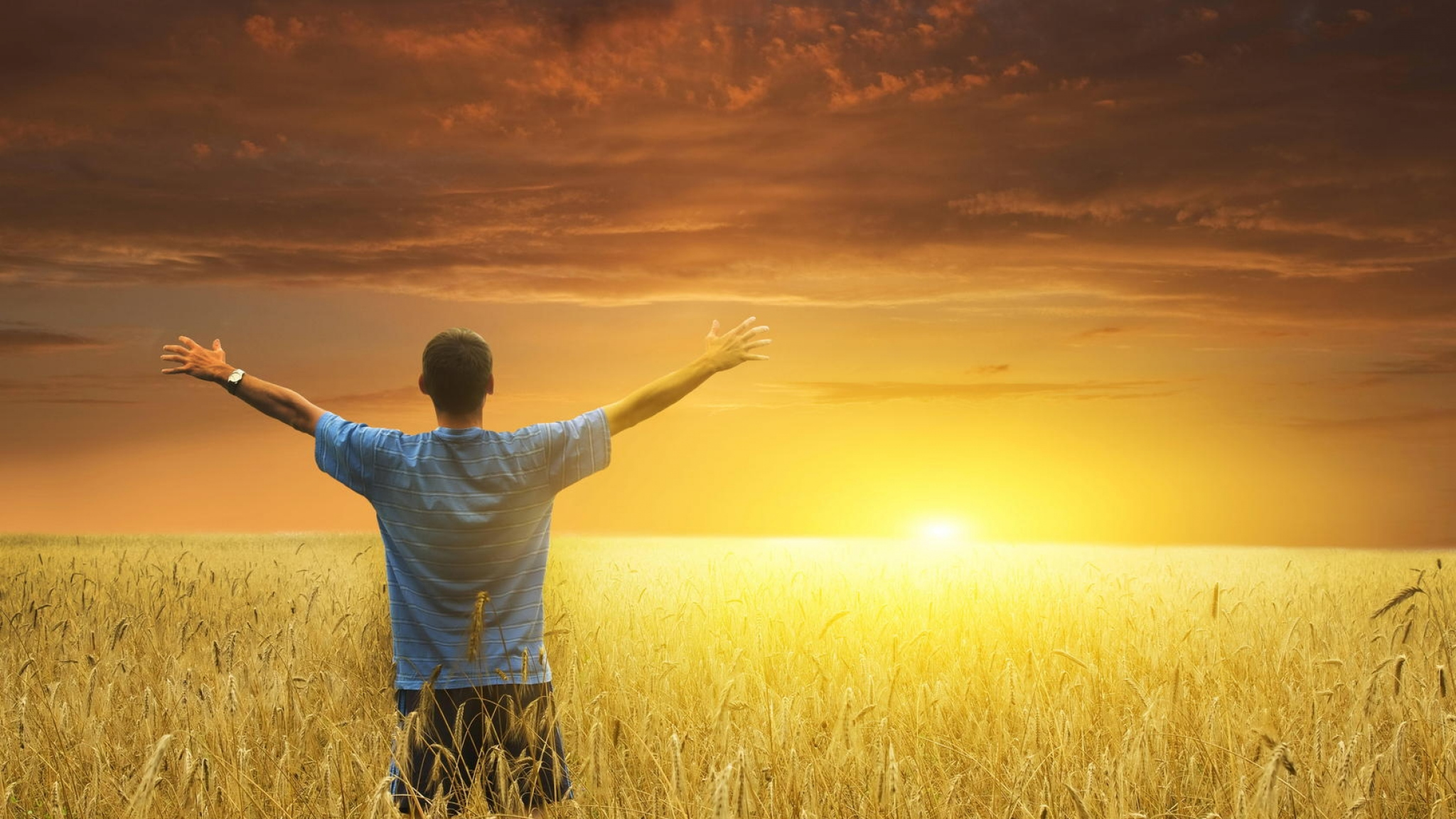 uomo di spalle che guarda il tramonto in un campo di grano